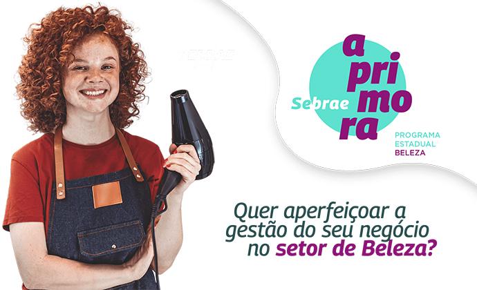 Qualificação online e gratuita - Sebrae e Governo do Estado de São Paulo oferecem curso de aperfeiçoamento gestão de negócio em beleza